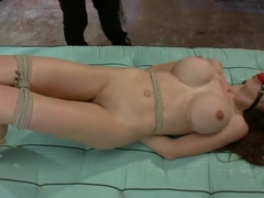Trained and Degraded Pornstar