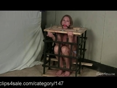 Loads of Adult Diaper act at Clips4sale.com