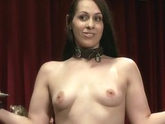 The Anal Petition of Ana Foxxx